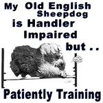 Old English Sheepdog Agility