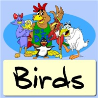 Cartoon Bird Shirts|Avian Art|Bird Lover Gifts