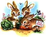 Bunny Patch