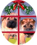 Chinese Sharpei Christmas Puppy