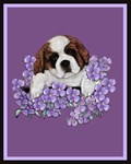 St. Bernard Puppy with flowers