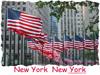 New York New York Flags