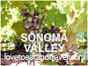 Sonoma Valley Gifts