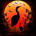 Heron Shape on Stunning Sunset