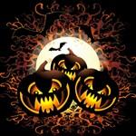 Black Pumpkins Halloween Night