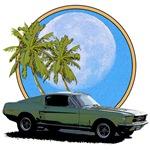 67 Mustang 3