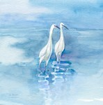 both of us-2 Egrets together