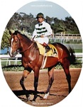 Exceller and Shoemaker