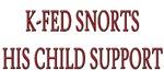 K-Fed Child Support