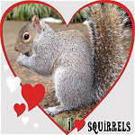 Squirrel Lover Gifts