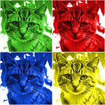 Cat Pop Art