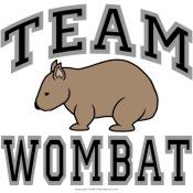 Team Wombat V