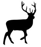 Black Elk Silhouette