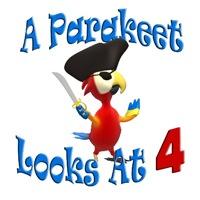 Parakeet Looks At 4
