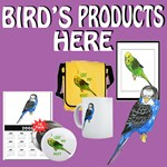 BIRD'S PRODUCTS