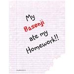 Basenji Homework
