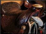 .saddle.