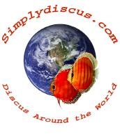 SimplyDiscus wild pair design