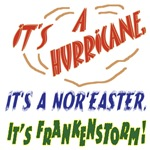Hurricane, Nor'easter, Frankenstorm! (Sandy 2012)