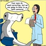 Hammerhead Shark Eye Exam
