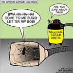 Spider Darwin Award Winner