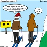 Idiot Skiers
