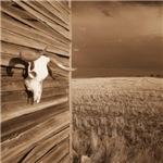 Prairie Barnside
