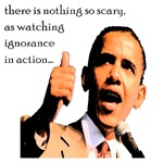 there is nothing so scary as watching ignorance in