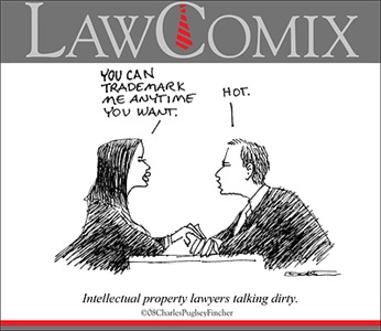 I.P. Lawyers Talk Dirty
