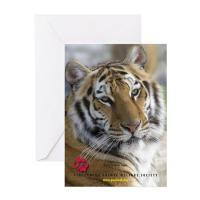 Tiger Notecards