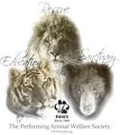 Lions, Tigers & Bears