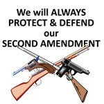 Protect & Defend theSecond Amendment