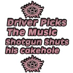 Driver Picks the Music 3
