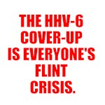 THE HHV-6 COVER-UP IS EVERYONE'S FLINT CRISIS.