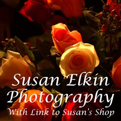 Susan Elkin Photography, link to Susan's shop