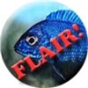 Cichlid Flair!