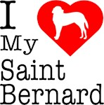 I Love My Saint Bernard
