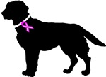 Labrador Retriever Breast Cancer Support