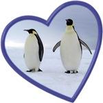 Emperor Penguin Gifts