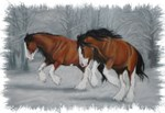 Clydesdales in snoww Section