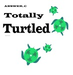 Totally Turtled For Two Maternity T-shirts