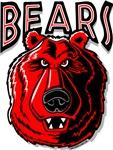 Bears Logo