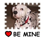 DALMATION (BE MINE)