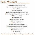 Pack Wisdom from the Movie