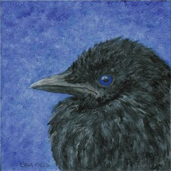 Baby Crow Painting