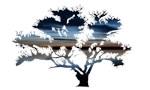 Blue Dawning Tree