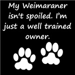 Well Trained Weimaraner Owner