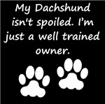 Well Trained Dachshund Owner