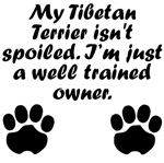 Well Trained Tibetan Terrier Owner