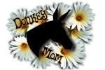 Donkey Mom